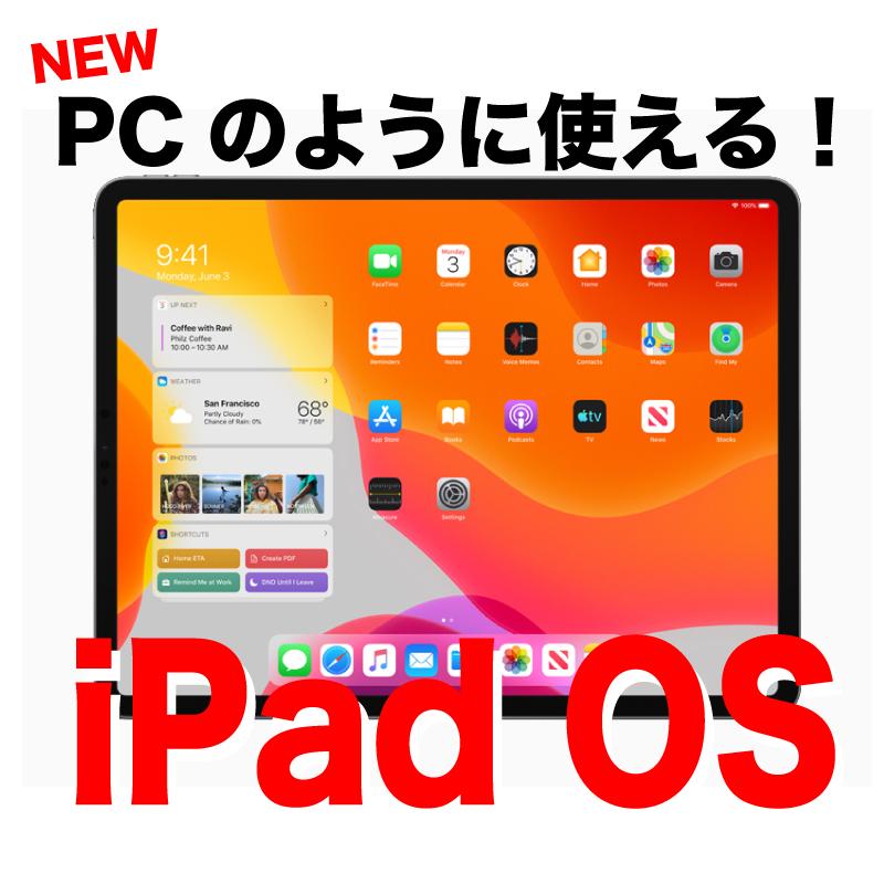 f:id:nii-tsuyo:20190617092309j:plain