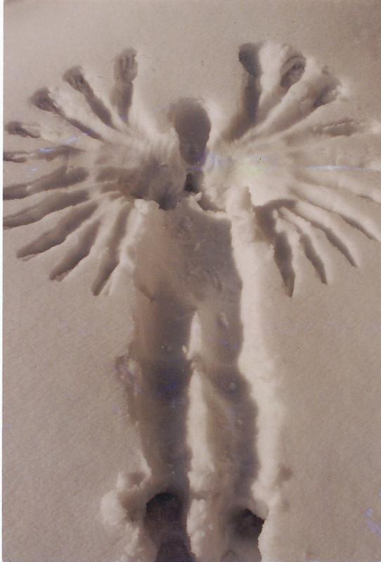 f:id:niigata-art226:20110208185808j:image