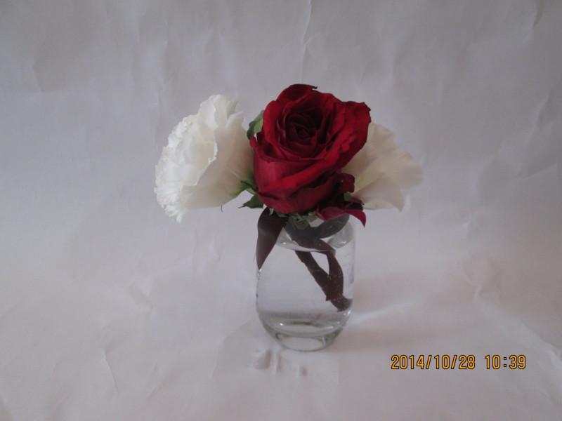 f:id:niigata-art226:20141029010035j:image:w640