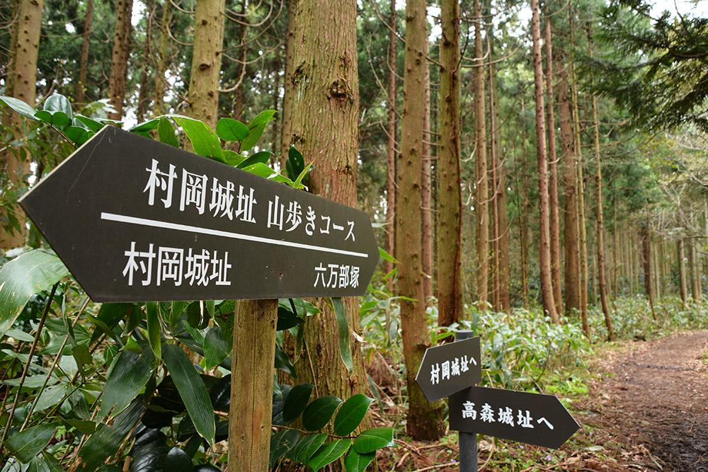 f:id:niigata-sanpo:20210331205620j:plain
