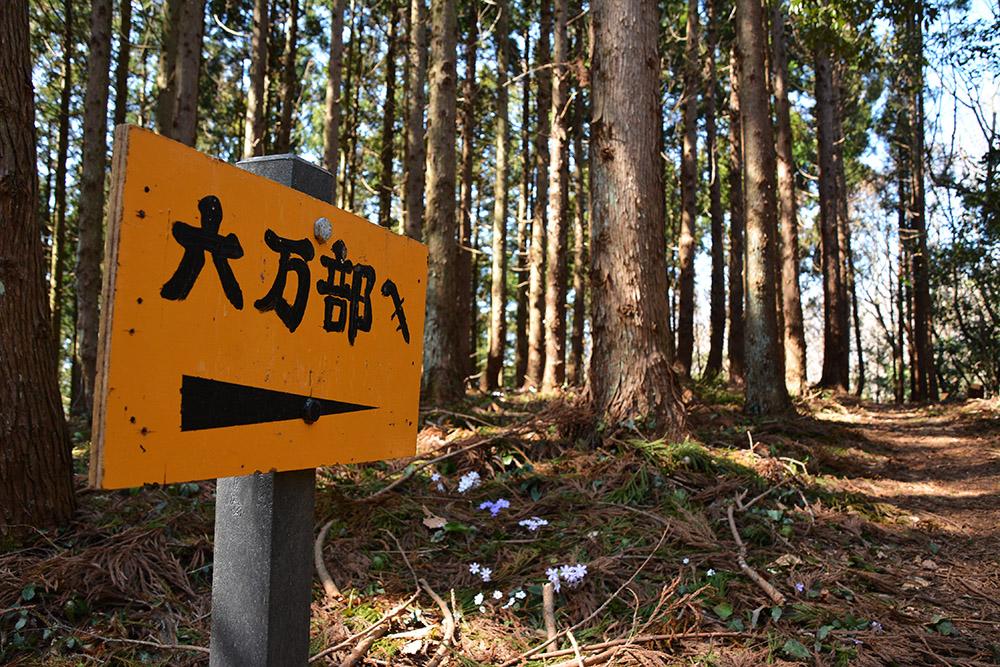 f:id:niigata-sanpo:20210401214147j:plain