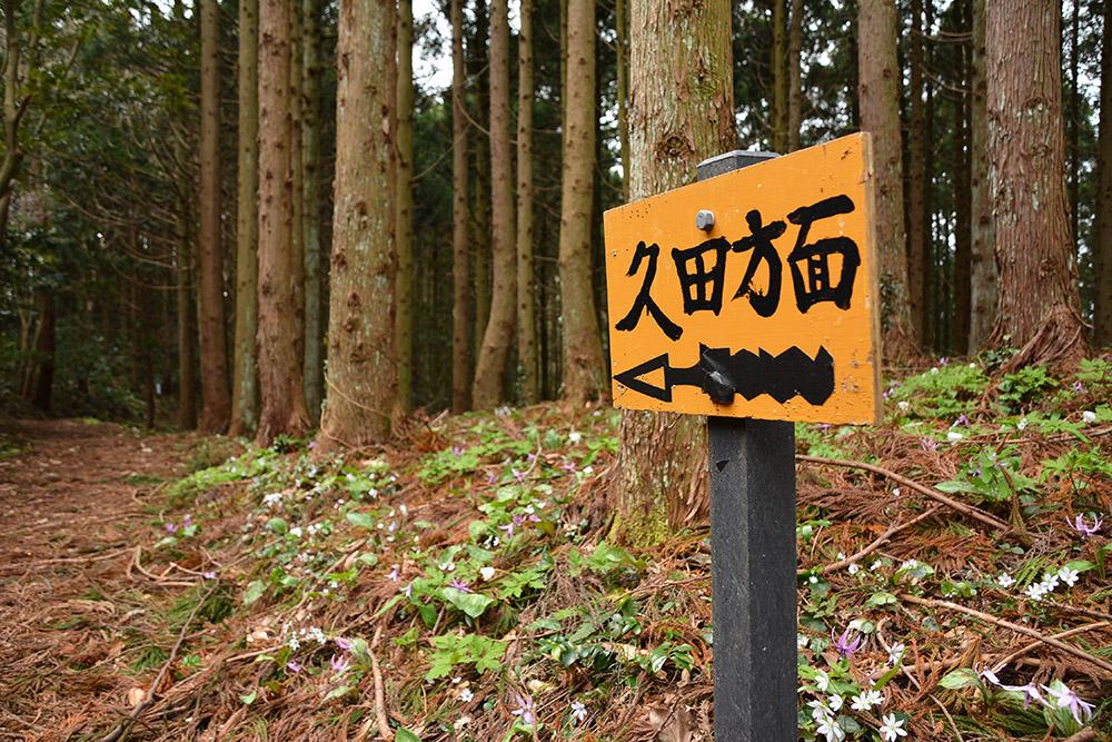f:id:niigata-sanpo:20210406210119j:plain