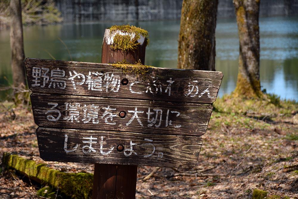 f:id:niigata-sanpo:20210509123327j:plain