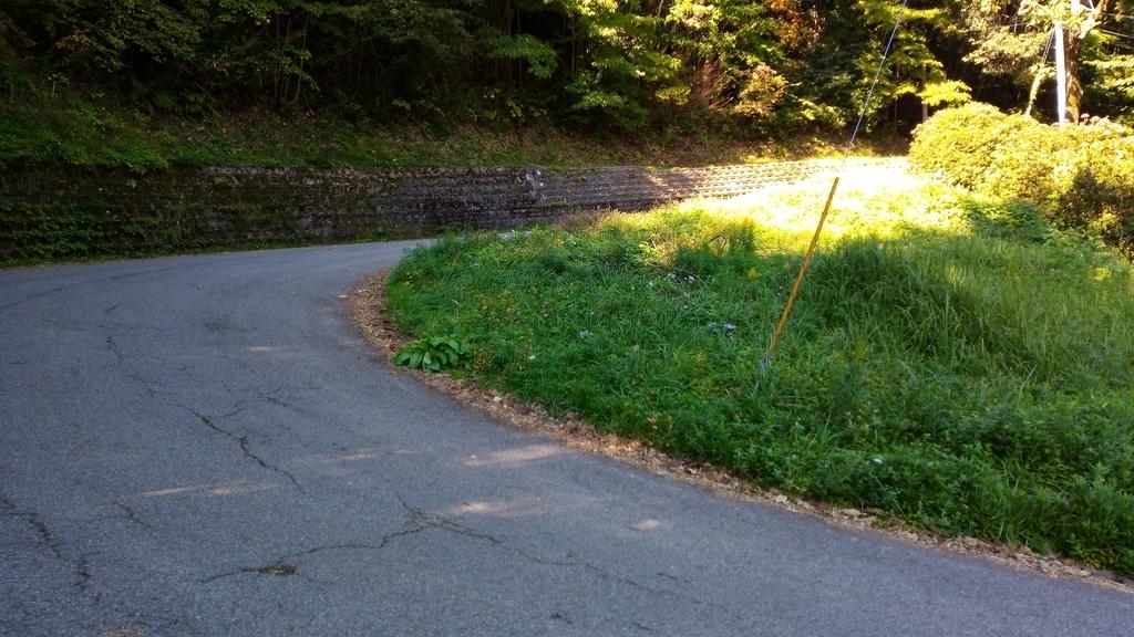 f:id:niigatabicycletourism:20181106233625j:plain