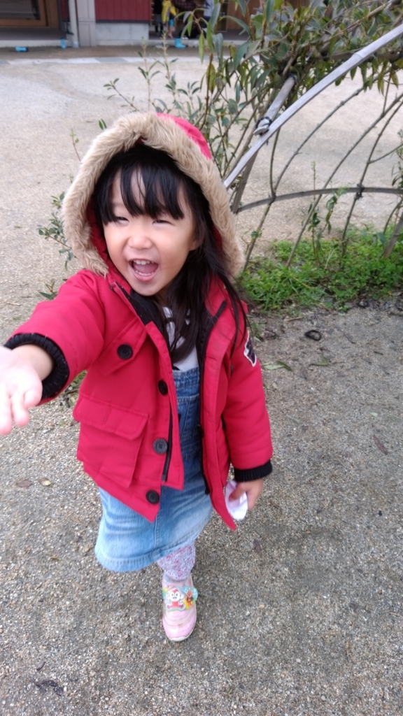 f:id:niji-nooka:20171030171452j:plain