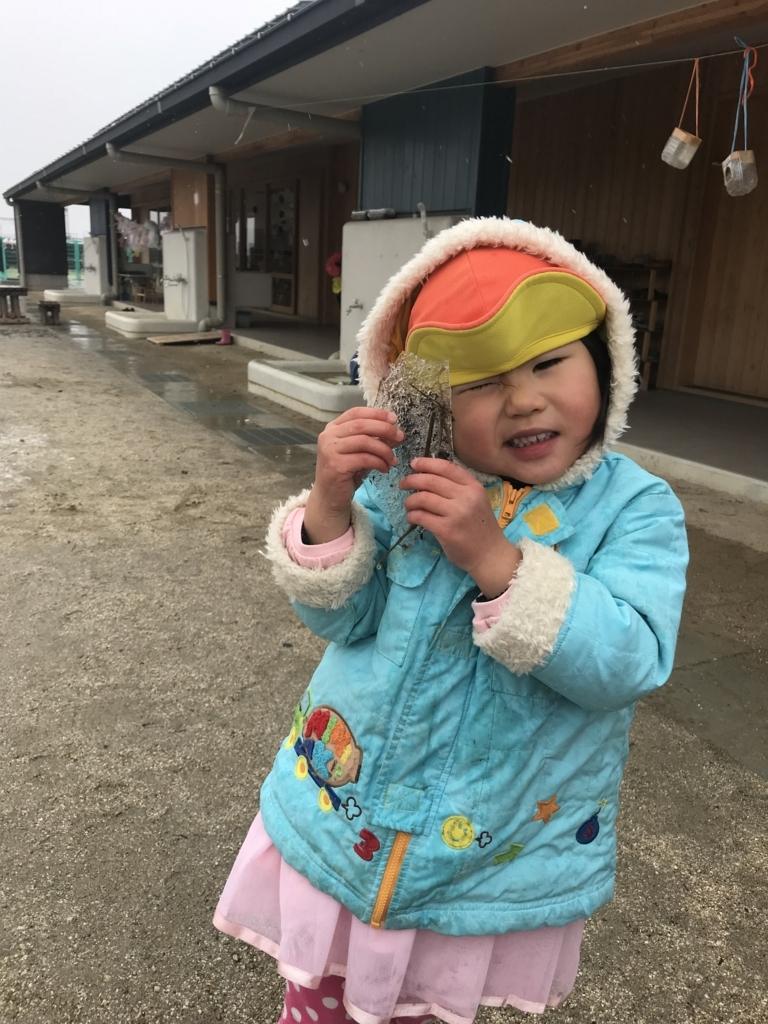 f:id:niji-nooka:20180118161121j:plain