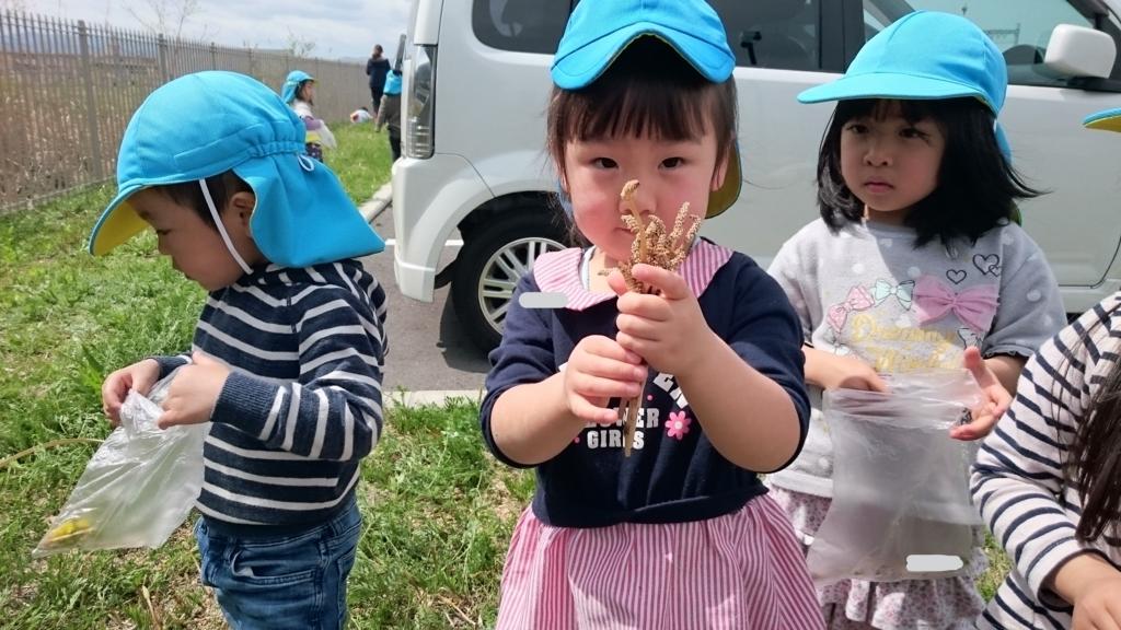f:id:niji-nooka:20180416141929j:plain
