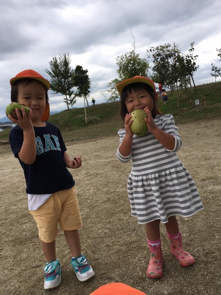 f:id:niji-nooka:20181119141627j:plain