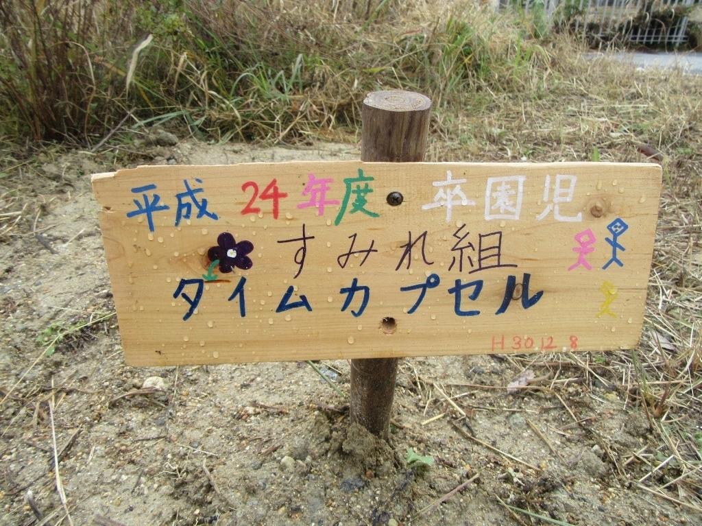 f:id:niji-nooka:20190110220315j:plain