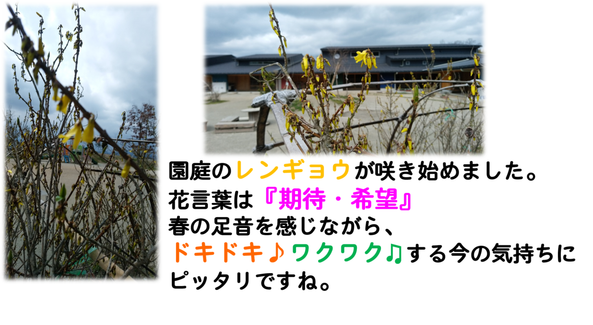f:id:niji-nooka:20190322123459p:plain