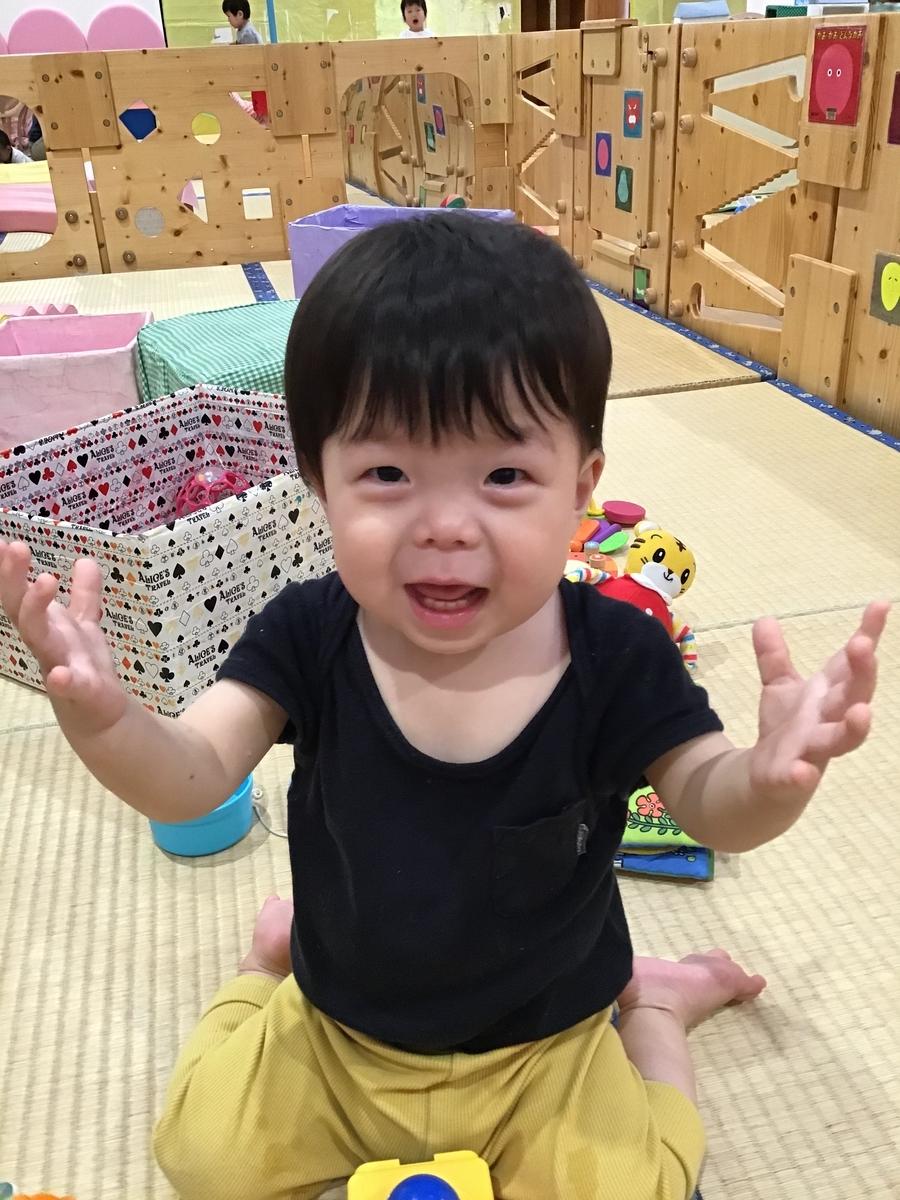 f:id:niji-nooka:20190605155031j:plain