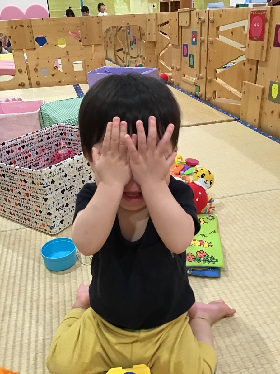 f:id:niji-nooka:20190605155058j:plain