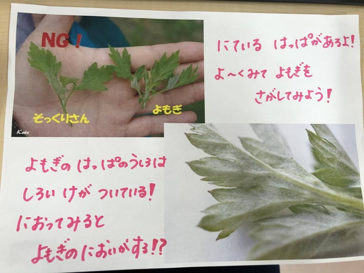 f:id:niji-nooka:20200408164134j:plain