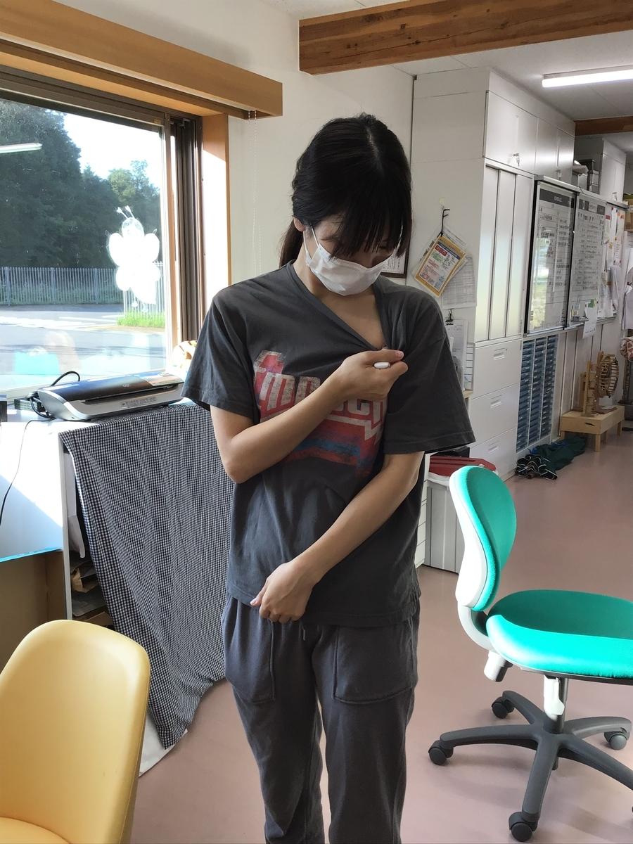 f:id:niji-nooka:20200910153254j:plain