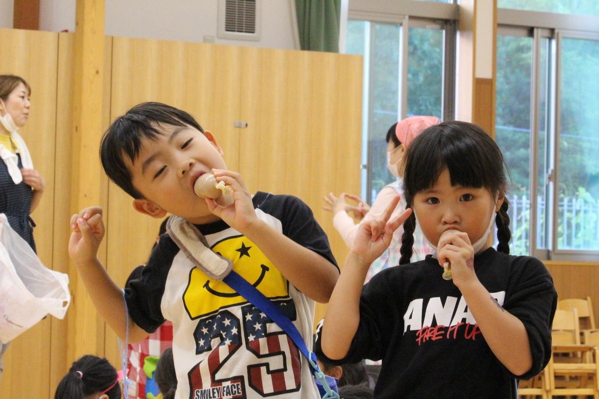 f:id:niji-nooka:20200917184453j:plain