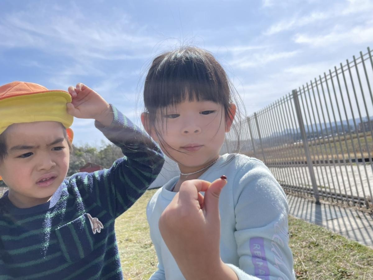 f:id:niji-nooka:20210311133451j:plain