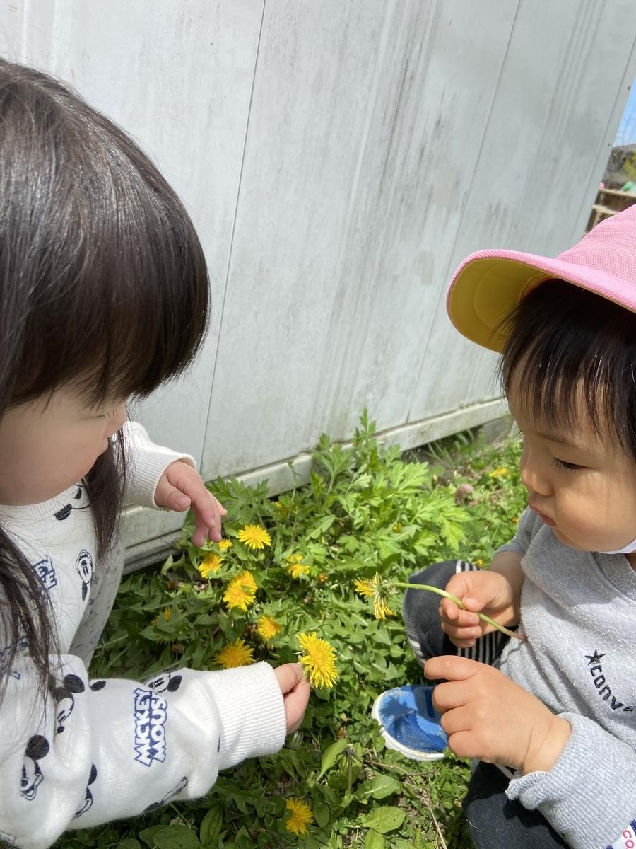 f:id:niji-nooka:20210430102312j:plain