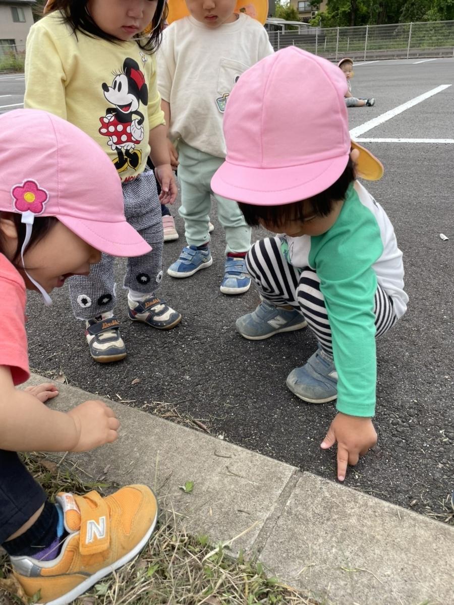 f:id:niji-nooka:20210528112801j:plain