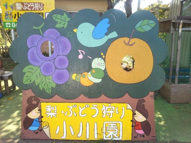 f:id:nijiirofamily:20180903221939j:plain