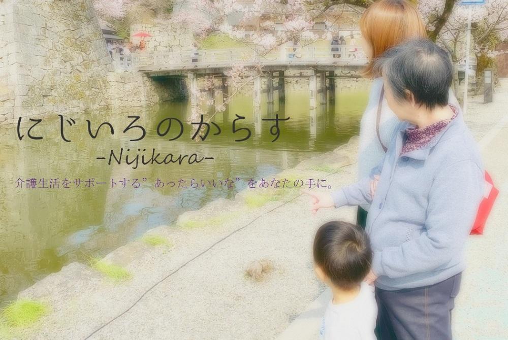 f:id:nijiironokarasu-miyabi:20190514005652j:plain