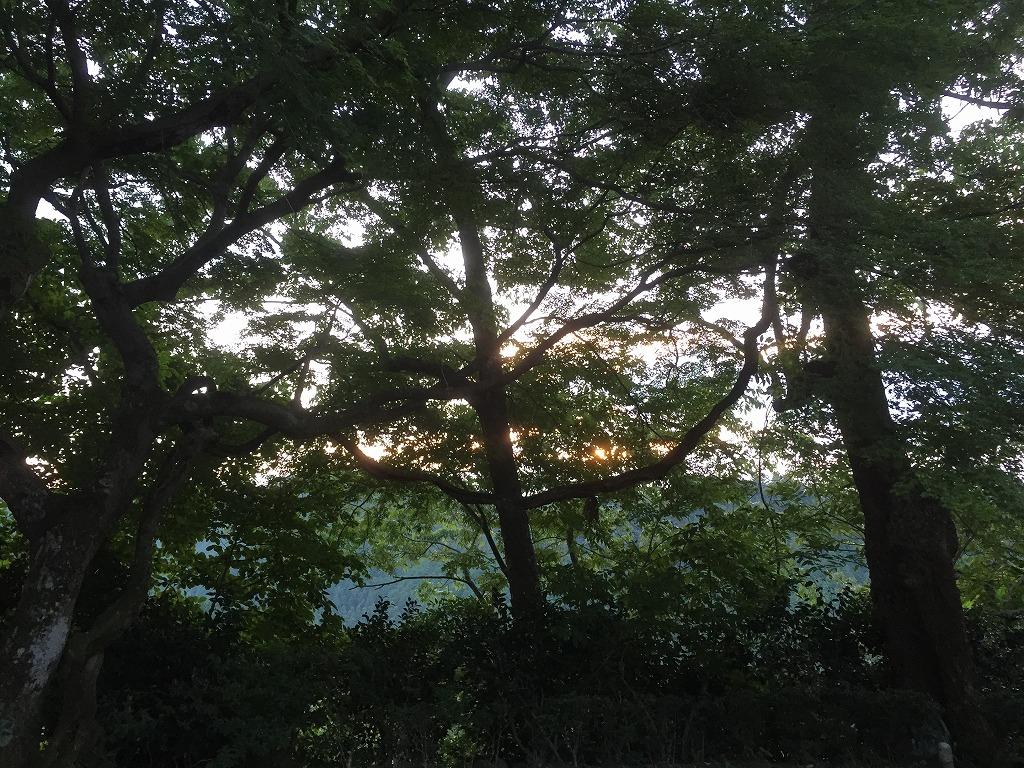 f:id:nijiirotakaramono:20160621135554j:plain