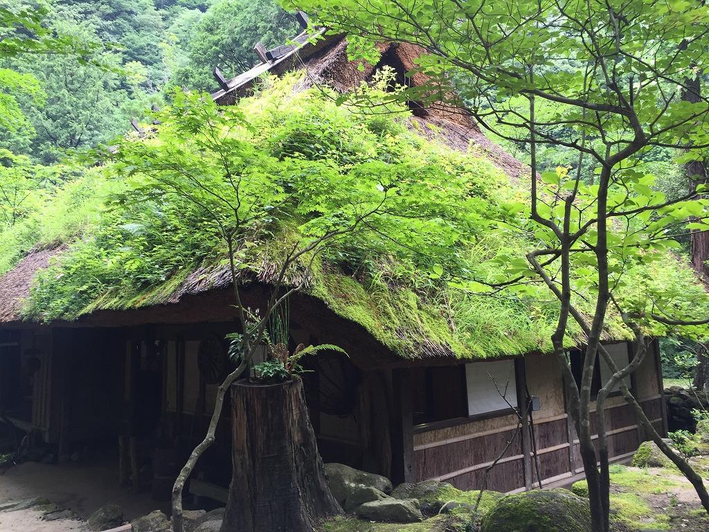 f:id:nijiirotakaramono:20160708125418j:plain