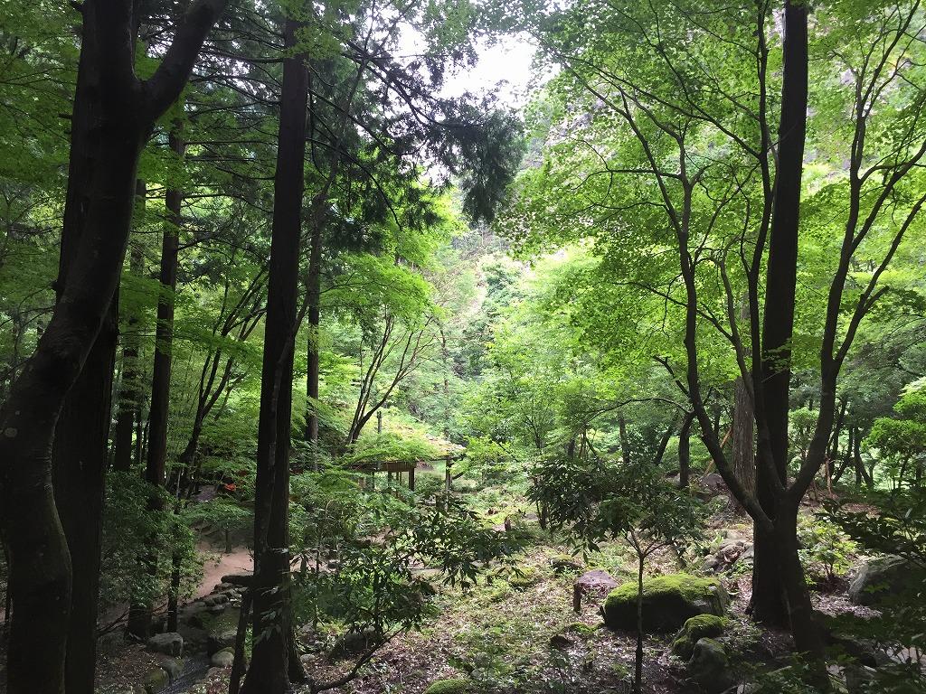 f:id:nijiirotakaramono:20160708132859j:plain