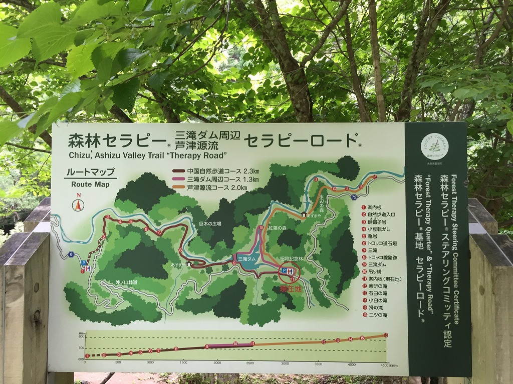 f:id:nijiirotakaramono:20160714133334j:plain
