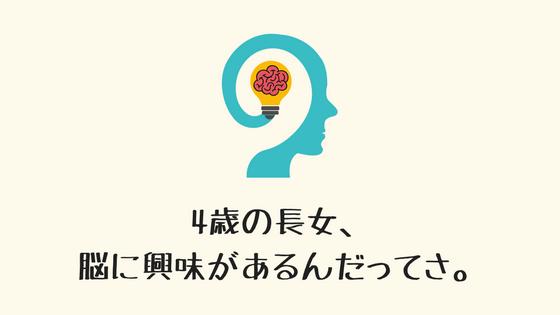 f:id:nijimamajyuken:20180427095726p:plain