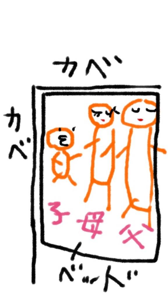 f:id:nijinoameko:20170303160435j:image