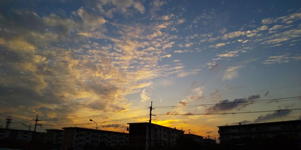 f:id:nijinokaigo:20210622123435j:plain