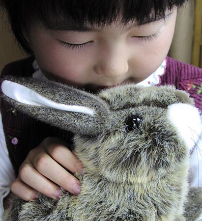 f:id:nijinotsumiki:20061016164254j:image