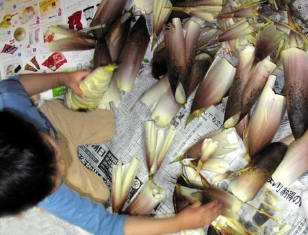 f:id:nijinotsumiki:20070425121853j:image