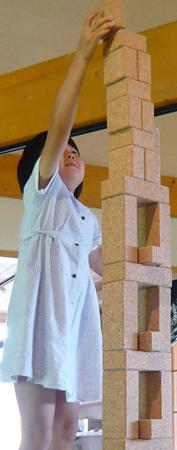f:id:nijinotsumiki:20070822144745j:image:left