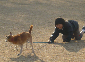 f:id:nijinotsumiki:20090108143057j:image