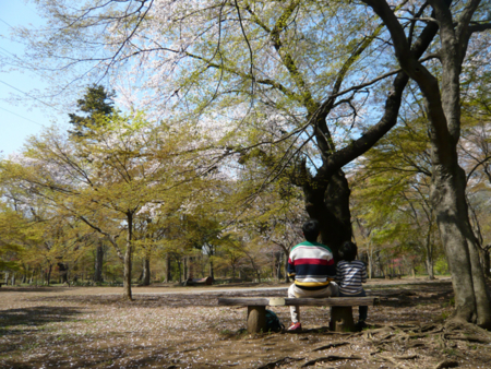f:id:nijinotsumiki:20090407132623j:image