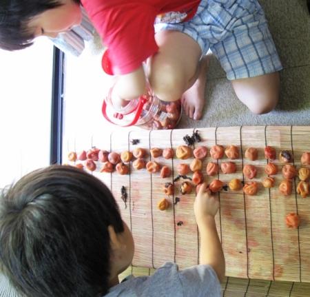 f:id:nijinotsumiki:20090827082537j:image