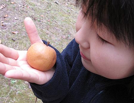 f:id:nijinotsumiki:20091128151555j:image