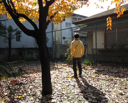 f:id:nijinotsumiki:20091201114931j:image