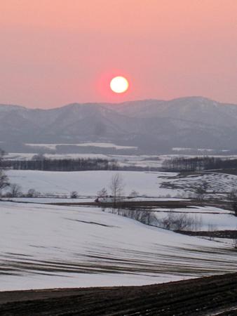 f:id:nijinotsumiki:20100416175914j:image