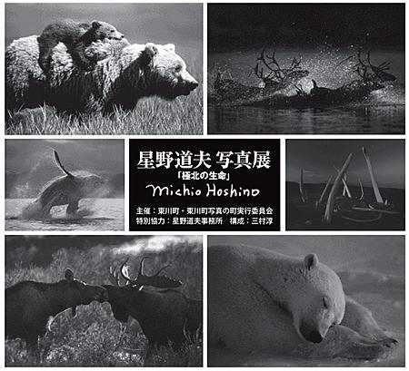 f:id:nijinotsumiki:20100508085454j:image