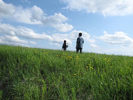 f:id:nijinotsumiki:20100602154320j:image
