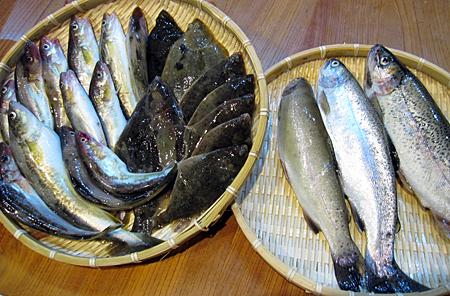 f:id:nijinotsumiki:20100616185502j:image