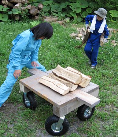f:id:nijinotsumiki:20100628175405j:image