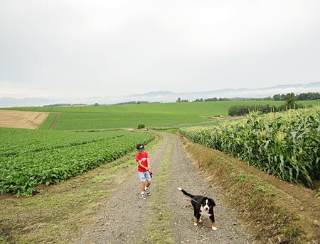 f:id:nijinotsumiki:20100804085832j:image