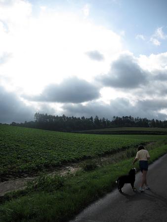f:id:nijinotsumiki:20100816070541j:image