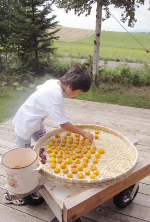 f:id:nijinotsumiki:20100817104816j:image