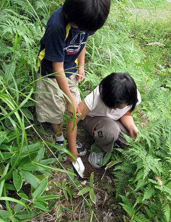 f:id:nijinotsumiki:20100829171507j:image