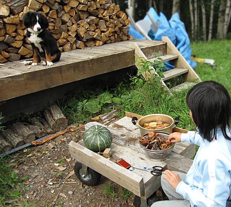 f:id:nijinotsumiki:20100923132015j:image