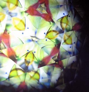f:id:nijinotsumiki:20101123145335j:image
